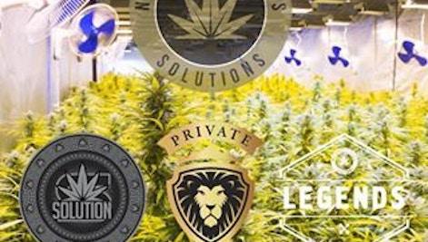 Flow Cbd Gel Green2go Medical Marijuana Menu