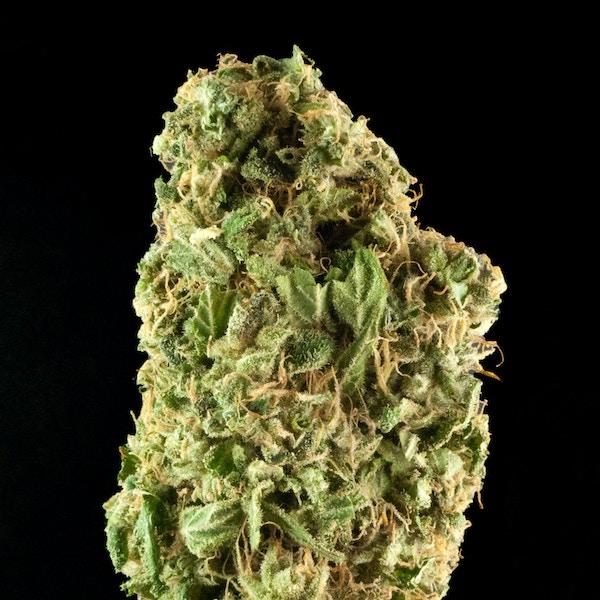 Vapor Room - Medical Marijuana Menu - Bay Area | Medicinal ...