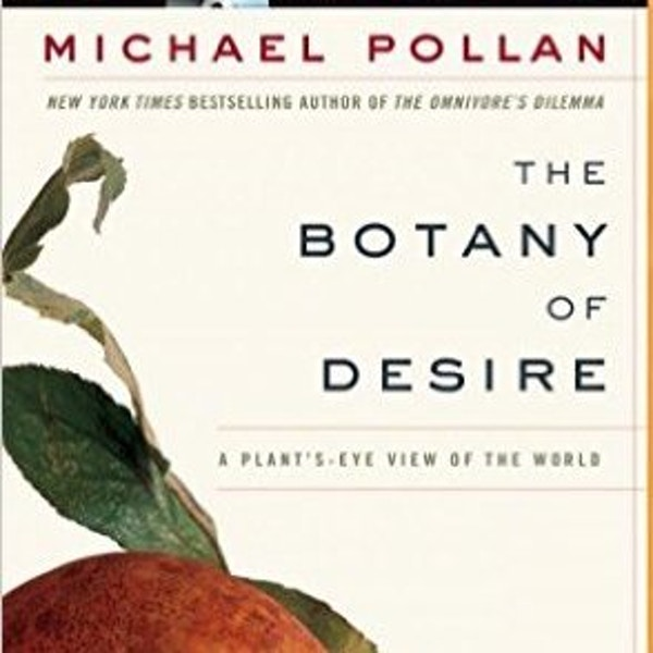 an analysis of the topic of apples malus domestica in michael pollans book the botany of desire Adaptation to human needs in michael pollan's the botany part book, apples (malus domestica book, the botany of desire, michael pollan claims.