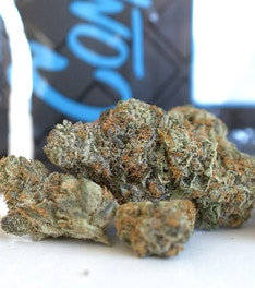 Lemon Trill - C R A F T  Cannabis Delivery - Medical