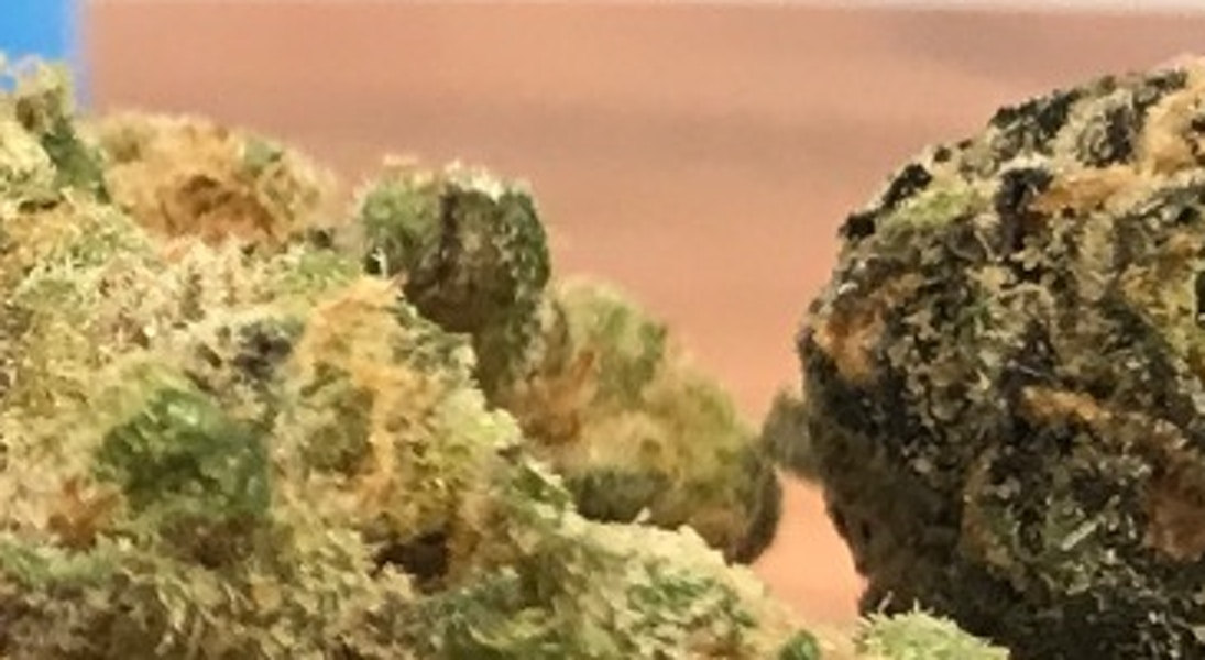 London Pound Cake Strain Review