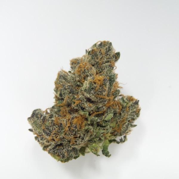 Acai Berry - Phytologie - Medical Marijuana Menu | Medicinal