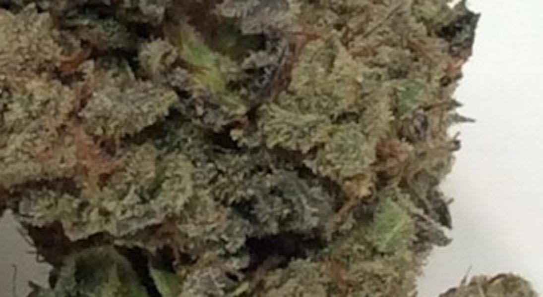 Tiger Paw - Abatin Wellness Center - Medical Marijuana Menu