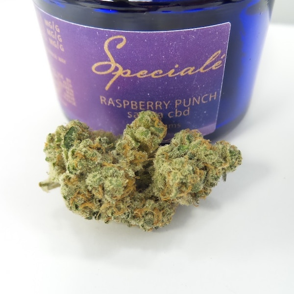 Raspberry Punch Phytologie Medical Marijuana Menu