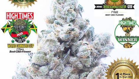CBD OG 5x 1st place HTCC - C R A F T  Cannabis Delivery