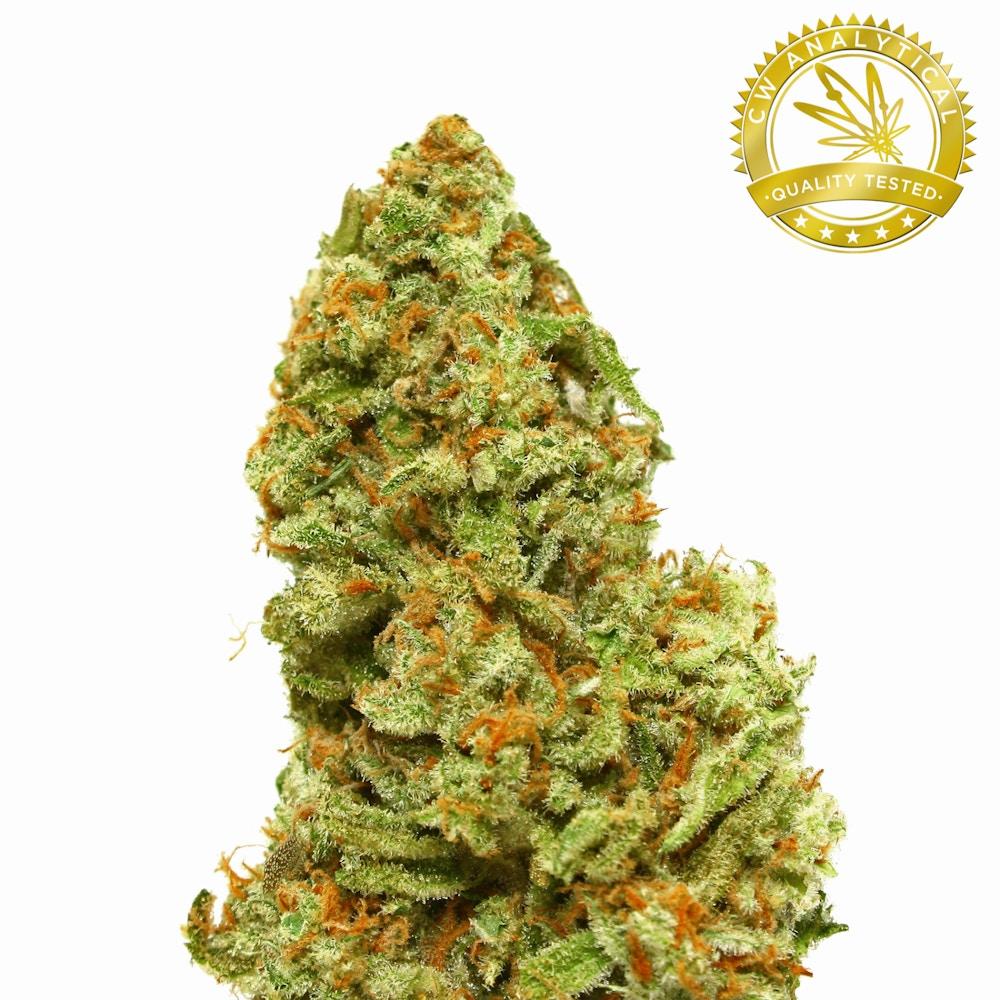 Blue Queen - Sovereign Wellness Center - Medical Marijuana