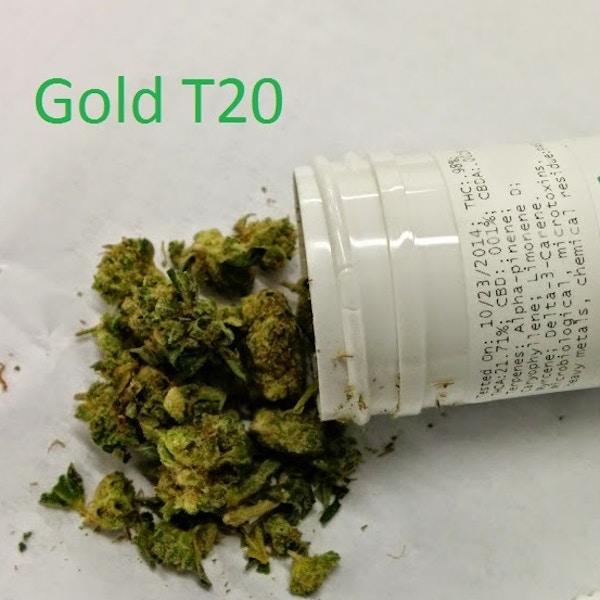 Curaleaf T20 - Arrow Alternative Care - Medical Marijuana